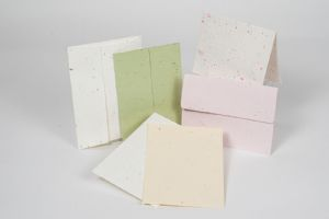 Blank Cards & Envelopes