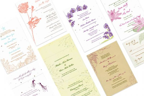 Wedding Collection Handmade Seed Embedded Plantable Invitations