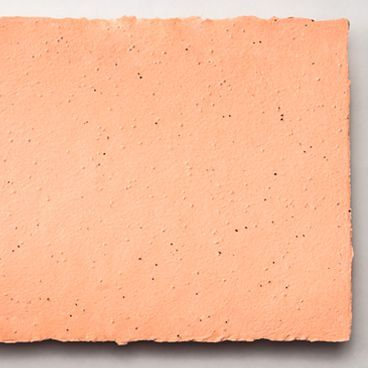 Grow-A-Note® Sheet Peach Echo