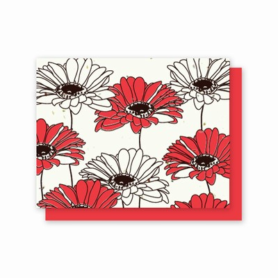 Grow-A-Note® All Occasion Gerber Daisy