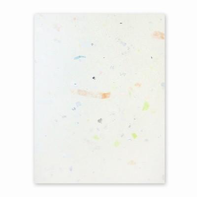 PaperEvolution® Handmade Sheet- 100% Junk Mail®