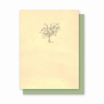 Grow-A-Note® Song Birds