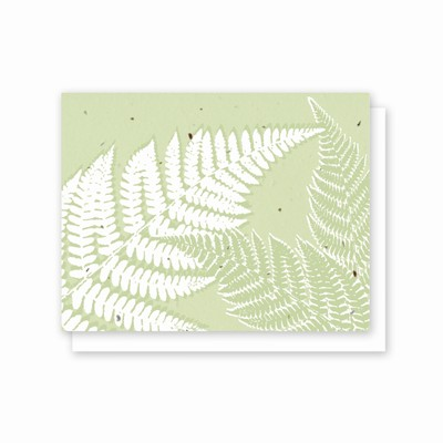 Grow-A-Note® All Occasion Fern