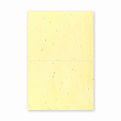 Grow-A-Note® A6 Folded Card Any Color 25 Pack