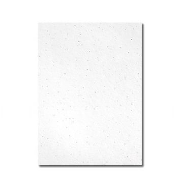 Grow-a-Note® Sheet Natural White Poppy
