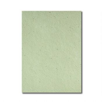 Grow-a-Note® Sheet Catnip