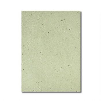 Grow-a-Note® Sheet Green