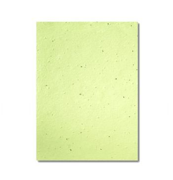 Grow-A-Note® Sheet Pistachio