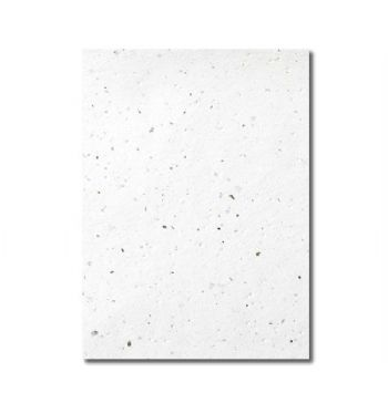 Grow-a-Note® Sheet Speckled Moss