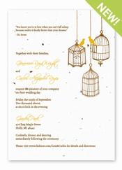 Birdcages Panel